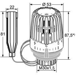 TA Heimeier 6002-00.500 Thermostat-Kopf K mit Fernfühler